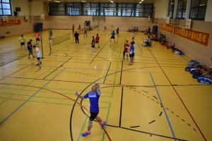 180818_汉堡中资企业吉林杯羽毛球比赛 (42)